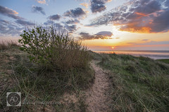 Dune (alun.disley@ntlworld.com) Tags: sunset sea weather clouds landscape sand path dunes shrubs wirral merseyside rivermersey coursegrasses northwirralcoastalpark