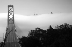 The Inexorable Flow of Time (mrperry) Tags: sf sanfrancisco city blackandwhite baybridge suspensionbridge skycrapers ybi yerbabuenaisland sanfranciscobaybridge westernspan baybridgefog d7000 1685vr fogunderbaybridge cityabovefog