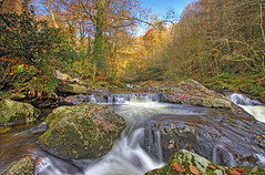 Autumn Waters (Twogiantscoops) Tags: autumn water woodland river woods stream ivybridge