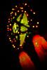 parol lights (knottyseth) Tags: christmas lights star holidays parol