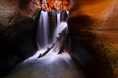 Canyon Light (Bill Ratcliffe) Tags: utah zion southernutah narrows slotcanyon kanarracreek kanarraville d7000 kanarrafalls kanarracreekcanyon