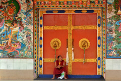 A monk waiting for prayers to start (Ready_to_roll) Tags: india indian buddhism tibetan goldentemple namdroling bylakuppe goldtemple serajey tibetansinindia