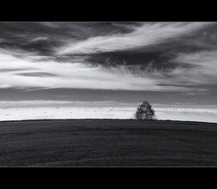 No man's land (beppeverge) Tags: light sky italy panorama mountains alps color green nature fog clouds montagne canon landscape geotagged photography eos photo europe italia nuvole photos  natura valley nebbia alpi paesaggio monti valli bielmonte oasizegna pendii panoramicazegna vallate beppeverge