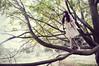 Kim | Fallen Bird (Levieran2) Tags: orange woman tree green bird fall smile fashion asian happy israel model nikon kim d christina dream fantasy fallen editorial 300