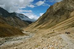 Welcome to India! (Saumil U. Shah) Tags: india mountain mountains nature trekking trek nikon hiking hike journey himalaya spiritual shiva hindu hinduism kailash yatra jain pilgrimage himalayas shah mansarovar manasarovar jainism kailas   saumil kmy incredibleindia   nabhidhang kmyatra saumilshah