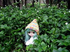 A little pixie (TheIvyTide) Tags: cute green hat hair leaf pixie mae blythe ep sbl enchantedpetal theivytide
