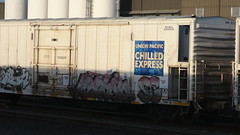 Normy (KINGSNEVERSUFFER) Tags: art train graffiti pacific boxcar express freight reefer chilled normy