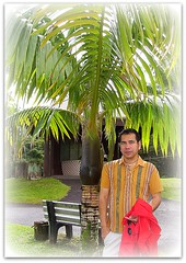 ~~ Hilo, Hawaii # 3 ~~ (TravelsThruTheUniverse) Tags: tropicalplants hilohawaii tropicalgardens tropicalfoliage thebigislandofhawaii tropicallandscapes soulopeople2