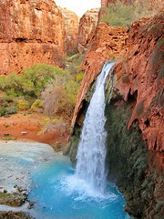 Havasu Falls on path to campground - Grand Canyon (Al_HikesAZ) Tags: blue camping arizona water creek landscape waterfall hiking turquoise grandcanyon aquamarine grand az canyon hike falls adventure backpacking waterfalls backcountry waters havasu wilderness reservation havasupai havasucanyon havasufalls havasucreek havasupaireservation alhikesaz gc2011 earthnaturelife havasu2011 havasuhagjahgeevma hagjahgeevma