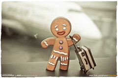 Gingerbread Man goes on vacation! (EdwardLee's collection) Tags: man movie toy toys happy shrek gingerbread collection meal dreamworks mcdonald happymeal gingy edwardlees