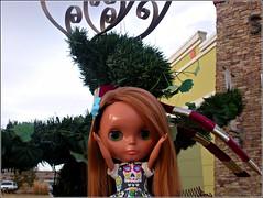 Non-Fun with Topiary!