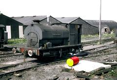 Lunchtime at William Loco Shed (Kingmoor Klickr) Tags: industrial railway steam cumbria whitehaven ncb 1772 avonside avonsideengineco williampit gordonedgar askhamhall