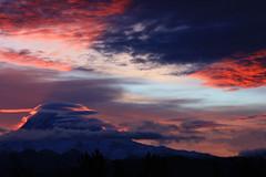 Shadow on Rainier (AVWAR BnB) Tags: sunrise washington rainier puyallup southhill 8690 fromourdeck avwarbnb avwarbn