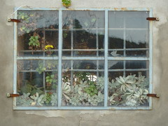 P1000069 (gzammarchi) Tags: italia natura finestra campagna fiore paesaggio collina inferriata camminata itinerario ozzanodellemiliabo