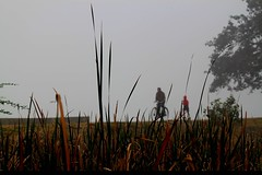 foggy morning(6.1.2012-1) (manwar2010) Tags: india art canon geotagged asia flickr gallery you tag award when contacts come geotag explored flickraward earthasia uluberia