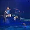 Dolfinarium & Frans Bauer _ 31 (@2008) Tags: people holland netherlands zoo dolphin dolfinarium harderwijk dolfijn fransbauer a900 zeiss135mmf18 sal135f18z sal135f18za