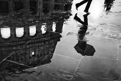 Wet Coliseum (Enzo D.) Tags: italy man rome roma reflection wet rain umbrella blackwhite uomo coliseum pioggia 2010 ombrello colosseo riflesso bagnato enzod