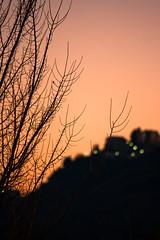 guardando tra i rami (ROSSANA76 Getty Images Contributor) Tags: panorama parco roma italia tramonto case luci montagna rocca santo controluce rami stefano lazio buio subiaco paese profilo simbruini bellegra gerano