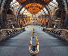 London - Natural History Museum (Philipp Klinger Photography) Tags: uk windows roof light shadow england people distortion color london history window colors metal stone museum architecture stairs island nikon colorful europa europe angle natural britain south great wide rail ceiling british kensington railing brass naturalhistorymuseum philipp sigma1224mm dri hdr nhm ballustrade klinger nofisheye nohdr aplusphoto d700 vertorama dcdead unusualviewsperspectives