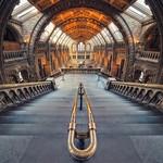 London - Natural History Museum