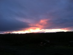 sunset January 2012 Birkemeier Farms (growing hazelnuts) Tags: oregon sunrise farm pacificcoast hazelnuts