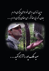 Free Saeed Malekpour                          ! twitter.com/#!/SaeedMalekpour http://flic.kr/p/bgYNp2 (Free Shabnam Madadzadeh) Tags: green love poster freedom movement iran political protest free change      saeed azadi  sabz aks      khafan      akx siyasi             zendani    malekpour  30ya30 kabk22 30or30     twittercomsaeedmalekpour httpflickrpbgynp2