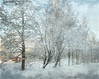 In snow drifts. (Bessula) Tags: winter snow tree texture nature sweden cottage hut idream bessula magicunicornverybest magicunicornmasterpiece musictomyeyeslevel1 rememberthatmomentlevel1 rememberthatmomentlevel2 rememberthatmomentlevel3