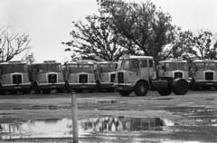 Billingtons Transport Heysham (tmag_la1) Tags: old truck wagon transport 1980s haulage heysham billingtons seddonatkinson