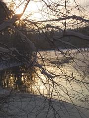 DSCF7746a (SeppoU) Tags: winter snow suomi finland finepix lumi talvi hme tammela copyleftby seppouusitupa