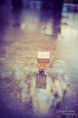 Walking in the rain (darktiger) Tags: japanese robot cool interesting funny suit cardboard figure magna yotsuba danbo revoltech danboard cardbo actionfigure stanfordmoore