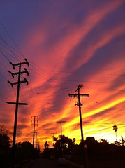 (monte means) Tags: sunrise telephonepoles telephonewires