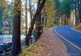 Yosemite autumn river road