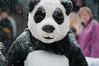 Tai Shan Farewell ~ 1/2010 (Lulu 2) Tags: zoo smithsonian jon panda jan january tai national shan 2010 nikographer