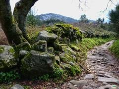 Donn-Subida al monte O Facho (juantiagues) Tags: pontevedra cangas donn ofacho oltusfotos juanmejuto juantiagus