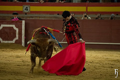 Morenito de Aranda (FJimenez92) Tags: toros bullfight leandro valdemorillo morenitodearanda ivanvicente