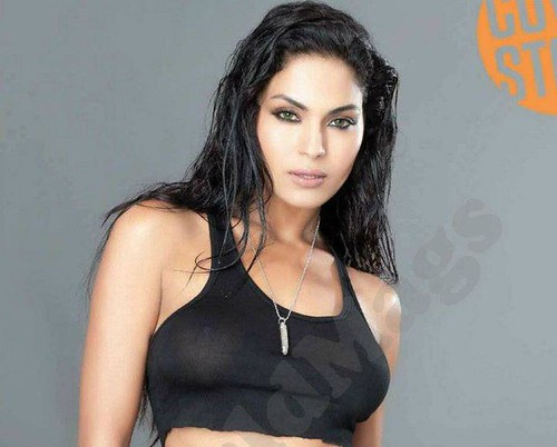 veena-malik-new-nude-picture-with-fhm