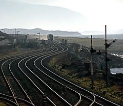 Feeling Flushed  ***Explored*** (Kingmoor Klickr) Tags: railway class infrastructure signal semaphore 156 sellafield northernrail cumbriancoast 156475 gordonedgar
