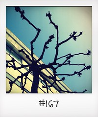 "#DailyPolaroid of 14-3-14 #167 • <a style=""font-size:0.8em;"" href=""http://www.flickr.com/photos/47939785@N05/13677895073/"" target=""_blank"">View on Flickr</a>"