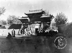20年代归顺国民政府的新疆