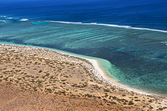 WA Ningaloo Echo Camp - 2950