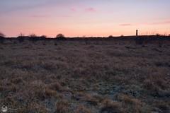 Het Westerlicht - 31-3 (Jacco Vasseur Fotografie) Tags: winter lighthouse netherlands landscape zonsondergang nikon nederland natuur zeeland zee avond lucht duinen vuurtoren schouwen landschap schouwenduiveland zeeuws landschapsfotografie zeeuw vasseur westerzicht nikond5200 jaccovasseur