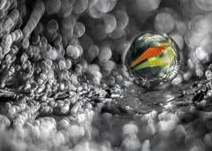 Marble Lost In Space (gporada) Tags: macro ball toy dof bokeh surreal m42 handheld dreamy zenit marble depth swirly nahaufnahme kugel helios oss bille 2016 canica altglas manualmode 3deffect biglia imagestabilization tiefe extensiontubes murmel tiefenschrfe vintagelens helios44m4 russianlens festbrennweite  oldlens  bokehlicious  zwischenringe wideopenshot helios44m4582 adaptedlens world100f swirlybokeh phvalue sonyphotographing beyondbokeh opticalsteadyshot sonya7ii bildstabilisierung ilce7m2 gporada uncompressedraw 44458mm20