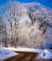 2009Jan-Frimas-15 (jdbrochu) Tags: photographie hiver troisrivieres rivage laneige pleinair vieuxtroisrivieres