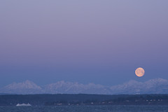 Moonsettting over Olympic Mountains (Jim Corwin's PhotoStream) Tags: seattle trip travel vacation moon tourism water beautiful horizontal sunrise outdoors photography waterfront sightseeing scenic dramatic tourists snowcapped adventure explore journey transportation northamerica destination pugetsound traveling inspirational washingtonstate setting inspire moonset inspiring waterway elliotbay ferryboat mountainrange olympicmountains snowcappedmountains getaways locallandmark beautyinnature localattractions