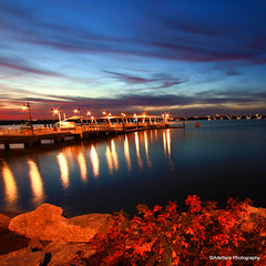 ~Romantic Lights! (Adettara Photography) Tags: bridge blue plants color reflection water stone port river lights evening washington md potomac romantic nationalharbor adettara doubleniceshot tripleniceshot blinkagain bestofblinkwinners blinkagainsuperstars blinksuperstar