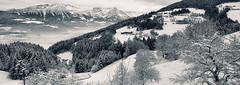 Winter Wonderland (a.penny) Tags: schnee winter panorama snow cold ice austria tirol österreich minolta pano konica kaiser kalt eis dimage wilder wunderland hopfgarten kufstein rigi söll apenny s404 soell itter hochsöll hochsoell