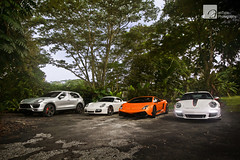 Jungle Trekking (anType) Tags: italy orange white sports car silver germany italian asia 911 cayenne sl exotic turb