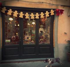 (Beelama) Tags: dog cane lucca hund tuscany toscana beelama toskana
