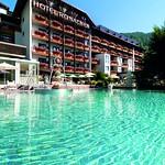 Hotel Ronacher Pool im Sommer