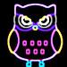 Color owls clip art